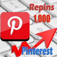 1000 buy Pinterest Repins