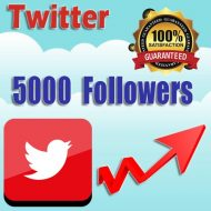 5000 buy twitter followers